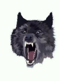 Rage Wolf Meme - insanity wolf image gallery know your meme