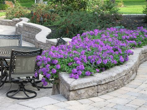 Retaining Wall Planter by Retaining Wall That Doubles As Planter Backyard Ideas