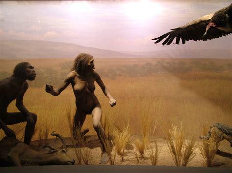libro natural history painting cro magnon paul willis
