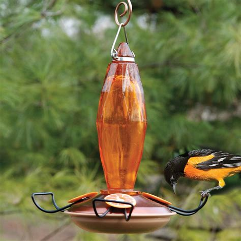 shop woodlink glass oriole feeder at lowes com