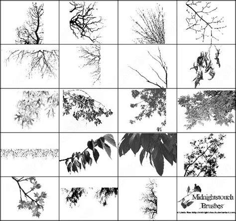 tree pattern brush photoshop tree brushes photoshop brushes download 2 410