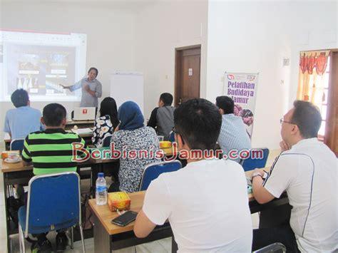 Agen Bibit Jamur Tiram materi cara pembuatan bibit jamur media 53985 bisnisukm