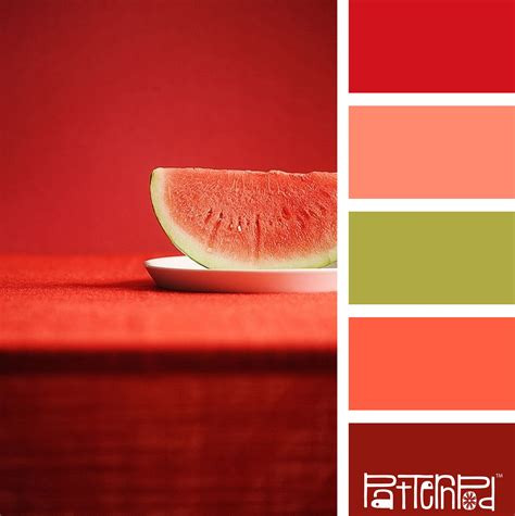 watermelon color watermelon inspired color palette of pinks reds and