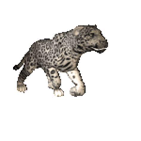 imagenes gif jaguar gif jaguar iniciando ataque gifs e im 225 genes animadas