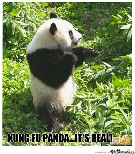 Memes De Pandas - kung fu panda by cococris meme center