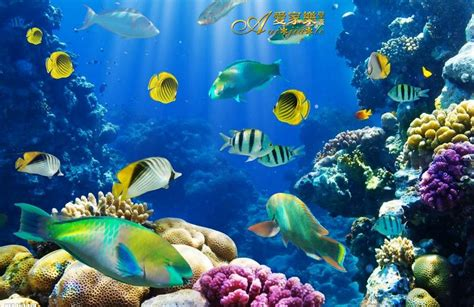 stereoscopic large mural ocean underwater world