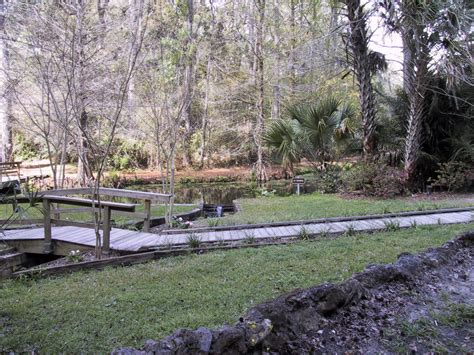 Ravine Gardens State Park by Ravine Gardens State Park