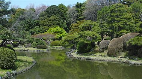 koishikawa botanical garden tokyo travel koishikawa botanical garden