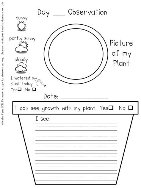 science observation template preschool plant journals template plant journal