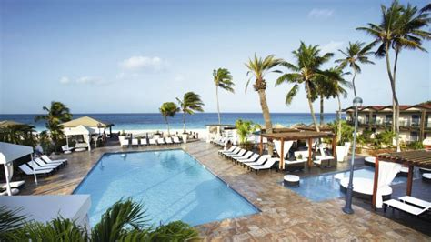 divi all inclusive divi aruba all inclusive in druif thomson now tui