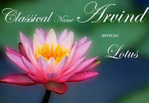 Lotus Flower Symbolism Christianity Guide To Indian Baby Names Pitarau Meaning Of