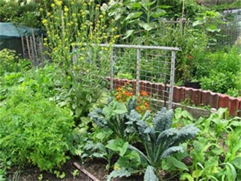 permaculture l autre vision du jardin bio