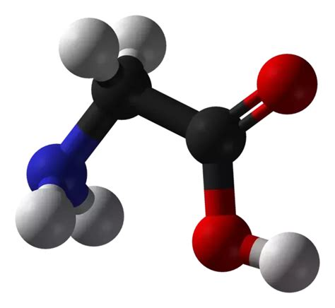 carbohydrates quora what are the monomers of carbohydrates lipids proteins