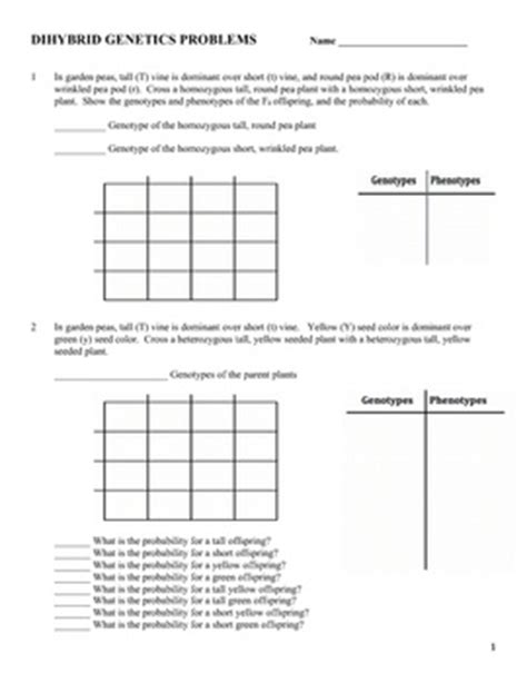 Dihybrid Cross Worksheet by 17 Best Images About Genetics On Teaching