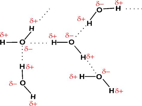 hydrogen bonding diagram what type of chemical bond are found between water