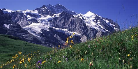 swiss mountain file swiss jungfrau mountains jpg