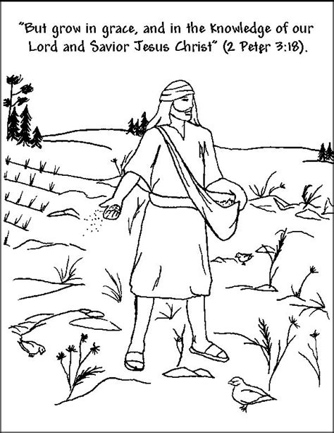 47 best images about parable of the sower matthew 13 1 23
