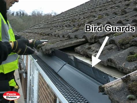 bird guards bird guard systems eaves comb filler the