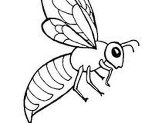 Coloriage Abeille Insectes Page 2