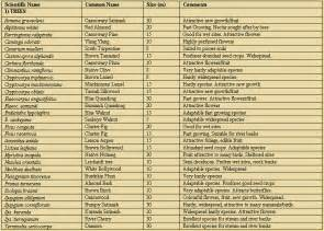 cassowary food plants list tropical rainforest north