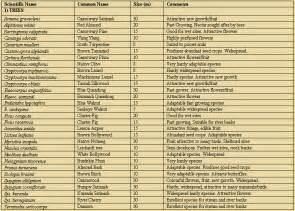 Rainforest animals list rainforest animals