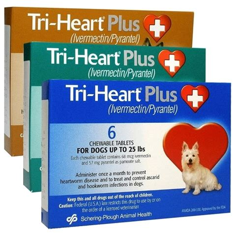 tri for dogs tri plus for dogs petflow