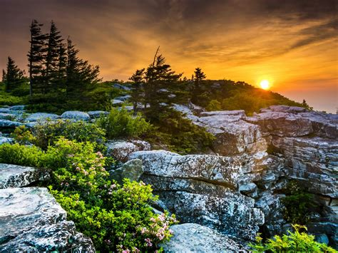 scenery usa sunrises  sunsets stones west virginia fir