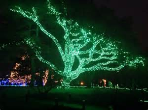 riverbanks zoo lights before 25 best ideas about toledo zoo lights on
