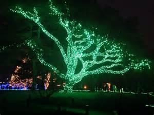 columbia zoo lights 25 best ideas about toledo zoo lights on