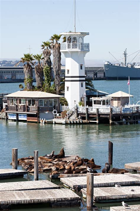 dinner on a boat bay area 25 best bay area restaurants images on pinterest