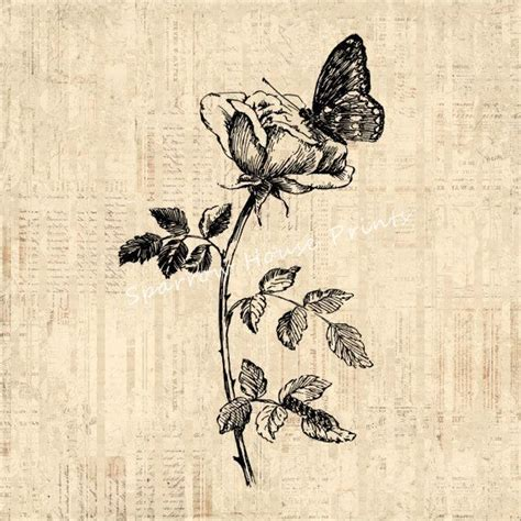 tattoo printer paper staples 25 best ideas about vintage butterfly tattoo on pinterest