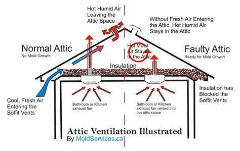 Attic Ventilation System - roofing roof ventilation for best exhaust system in your