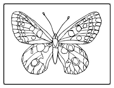 flower garden coloring pages printable flowers coloring pages florals and garden flower printable