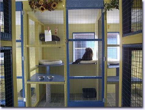 indoor cat room ideas indoor cat room casa gatos camas y rascaderos 16 large and hello dear
