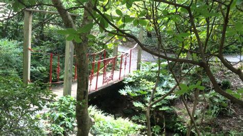 visit unc botanical gardens
