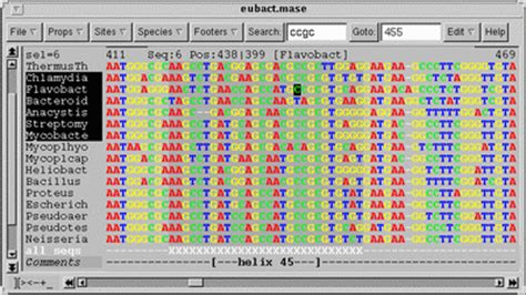 format converter fasta to nexus seaview 4 4 2 a graphical multiple sequence alignment