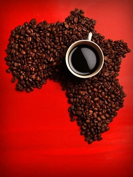 Franchise Coffee Bean coffee shop franchise best coffee beans at java times caffe