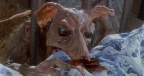 new year rat and monkey cinema 52 year three completer jackson braindead