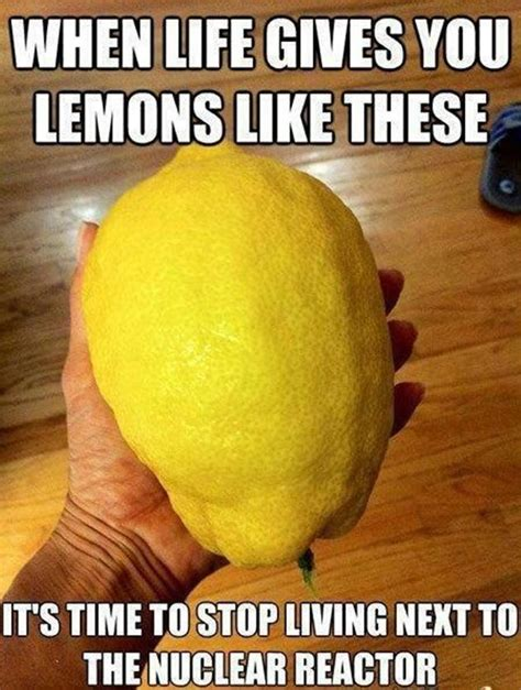 Meme Quotes About Life - when life gives you lemons 18 pics