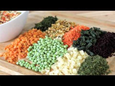 best food for picky eaters feeding care how to get a picky to eat funnydog tv