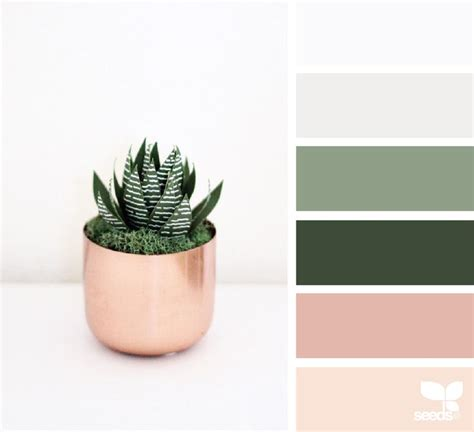 light gray color schemes best 25 green color schemes ideas on olive
