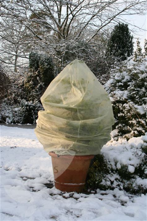 abdeckung pflanzen winter buy winter fleece plant covers delivery by waitrose
