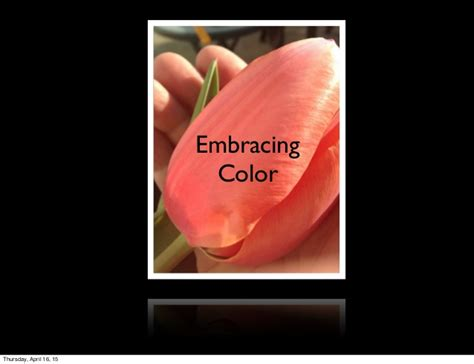 28 paint color consultations overland park color