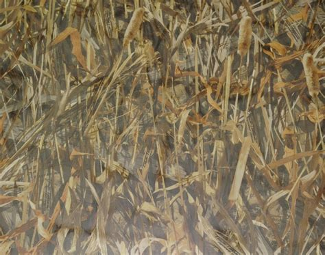 camo sheer curtains true timber flooded sheer duck blind curtain camo