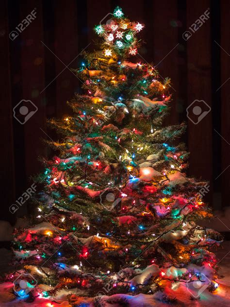 images of christmas trees with colored lights