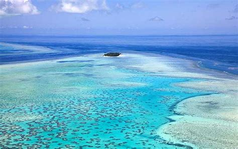 living on a boat in western australia australia all s well on the great barrier reef telegraph