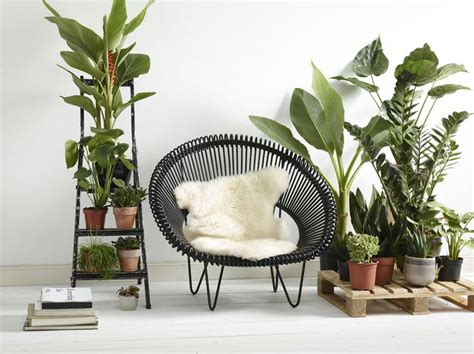 Plantes D Interieur Decoration by Plantes D Int 233 Rieur Et D 233 Coration Rock My Casbahrock My
