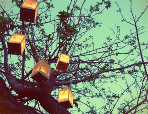 Backyard Wedding Lanterns Backyard And Garden Receptions Affordable Utah Weddings