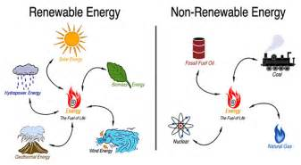Plants That Don T Need Natural Light Definition Of Energy Different Forms And Sources