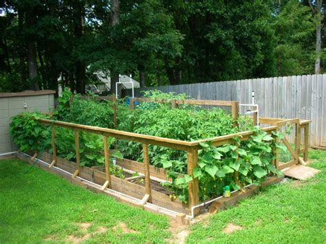 Information About Rate My Space Questions For Hgtv Com Raised Bed Designs Vegetable Gardens